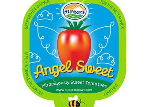 angel sweet - brand design